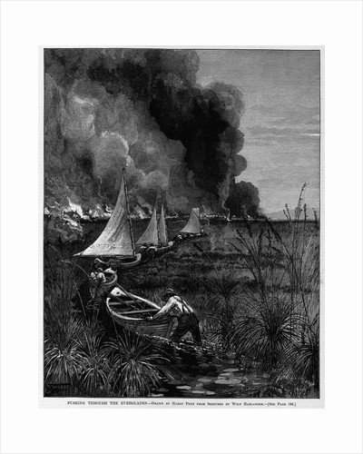Pushing through the Everglades by Harry Fenn from sketches by Ward Harlander