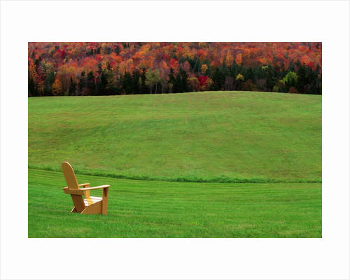 Chair On Lawn With Fall Foliage By Corbis