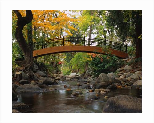Footbridge over Stream by Corbis