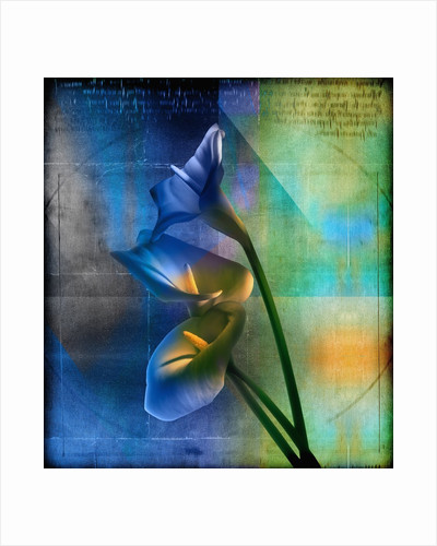 Calla Lilies and Colorful Patterns by Corbis