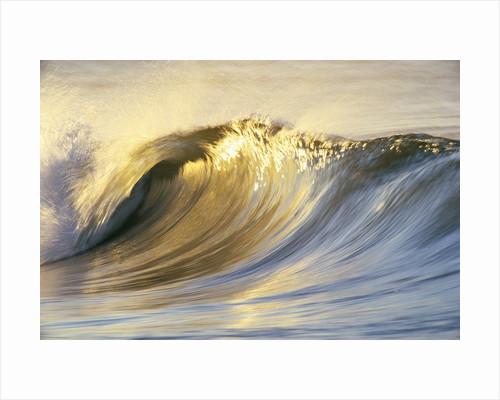 Ocean Wave Breaking by Corbis