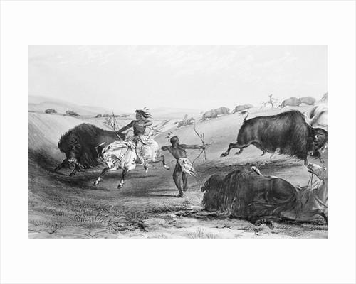 Indians Killing Buffalos by Corbis