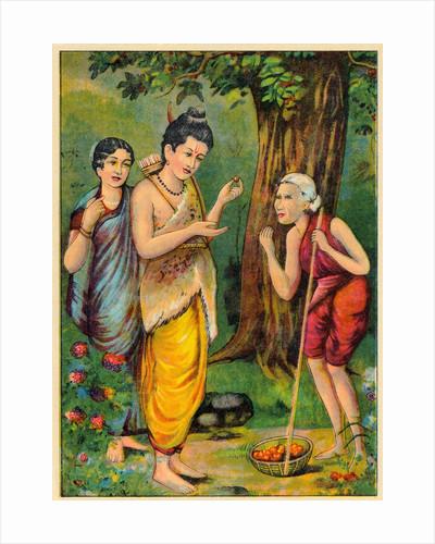 Rama Receiving Berries by Corbis