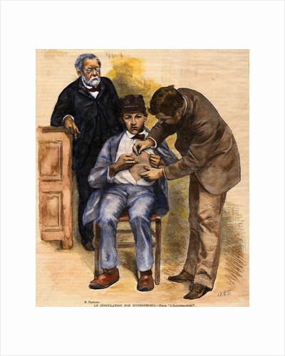 Print of Pasteur Performing Rabies Treatment on Patient by Corbis