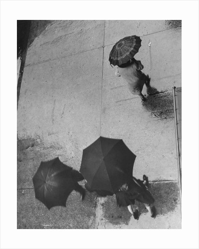 Pedestrians Under Umbrellas Walking Down Rainy Street by Corbis