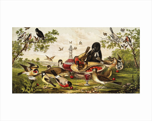 Color Print of Birds Feasting on a Fruit Pie by Corbis