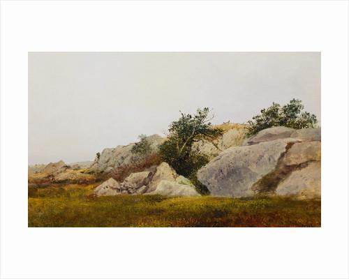 Rocky Landscape by John Frederick Kensett