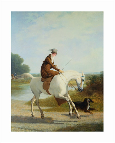 Miss Cazenove on a Gray Hunter by Jacques Laurent Agasse