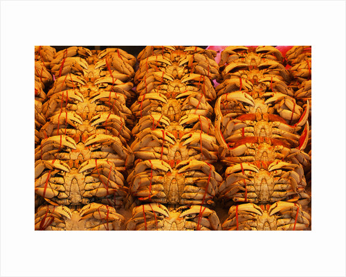 Fresh Crab at Pike Place Market by Corbis