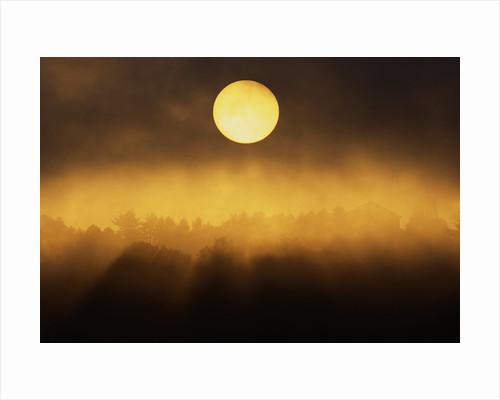 Sunrise Through Fog by Corbis