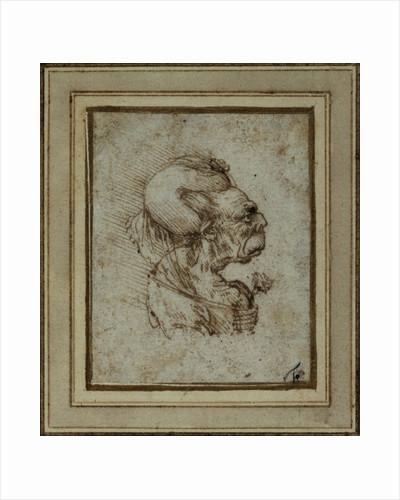 Caricature of an Elderly Woman by Leonardo da Vinci
