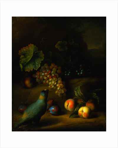 Painting of a Parrot with Grapes, Peaches and Plums in a Landscape by Tobias Stranover