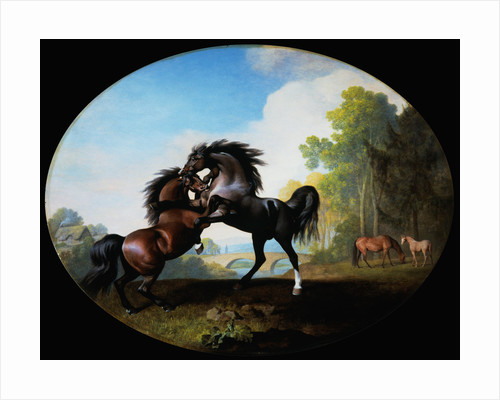 Stallions Fighting by George Stubbs