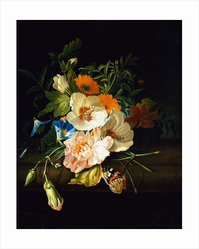 A Carnation, Morning Glory and Other Flowers by Rachel Ruysch