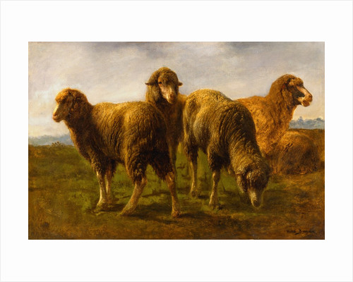 Sheep Grazing in a Meadow by Rosa Bonheur