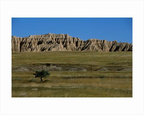 Landscape in Badlands National Park by Corbis