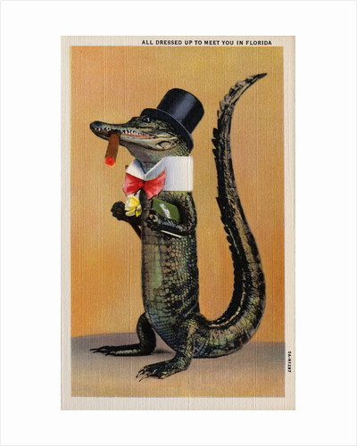 Postcard of Alligator in Top Hat and Bow Tie by Corbis