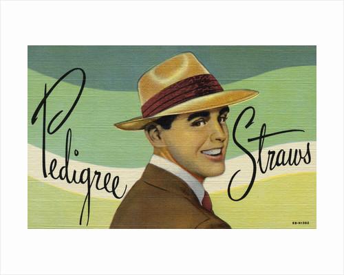 Pedigree Straws Advertisement by Corbis