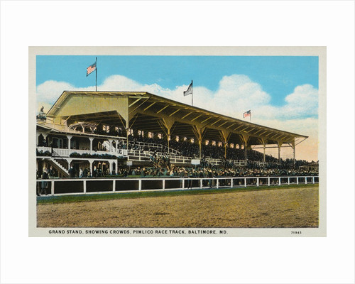 Postcard of Grand Stands at Pimlico Race Track by Corbis