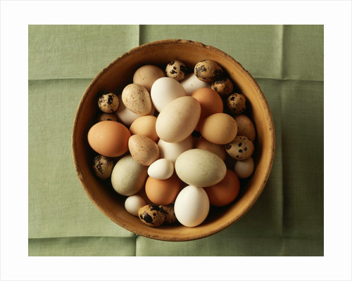 Variety of Eggs in a Bowl by Corbis