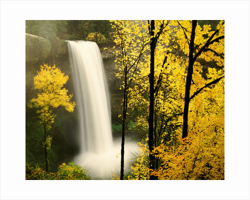 South Silver Falls in autumn - Silver Falls State Park, OR by Corbis