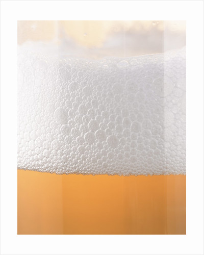 Close-up of a Glass of Lager by Corbis