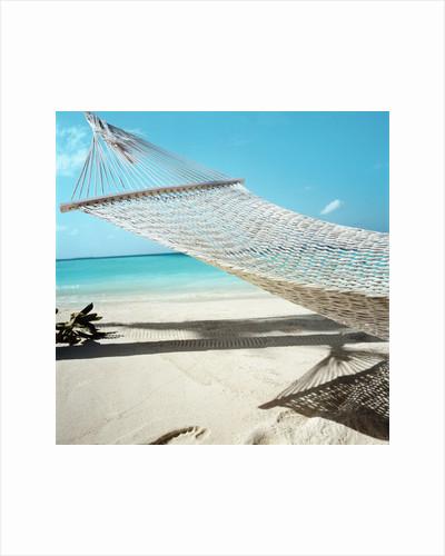 Hammock at the Beach by Corbis