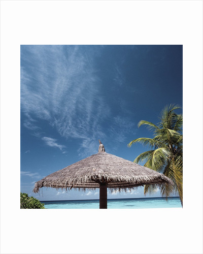 Cabana and Palm Trees by Corbis