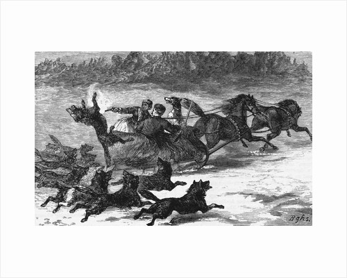 Illustration of Wolves Chasing Sleigh by Corbis