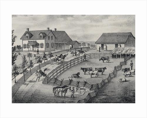 Farm Scene with Farm Animals by Corbis