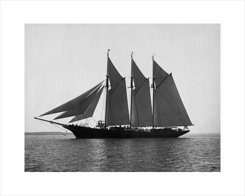 A Schooner with Full Sails by Corbis