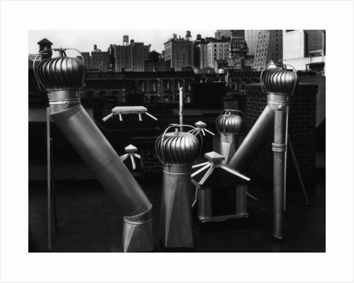 Nancy Newhall's Rooftop, New York City by Brett Weston