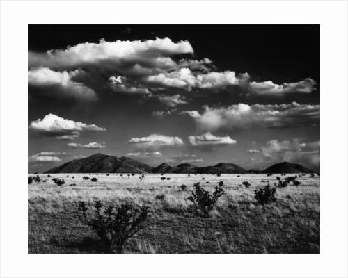 Desert Landscape, 1969 by Corbis