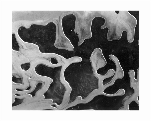Liquid Abstraction, California, 1956 by Corbis