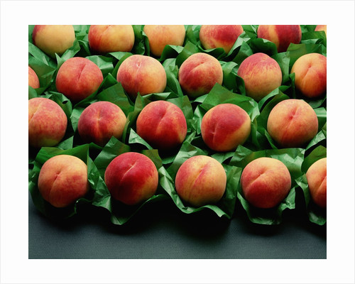 Peaches on Green Tissue Paper by Corbis