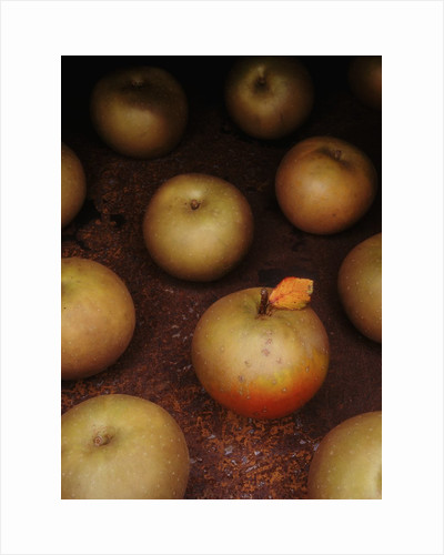 Apple With Leaf by Corbis