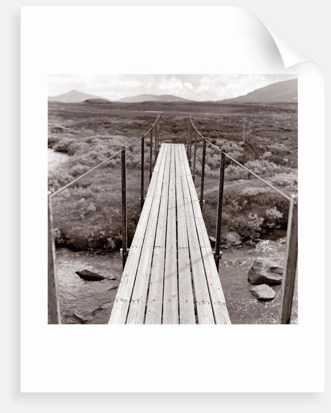 Wooden bridge over brook by Corbis