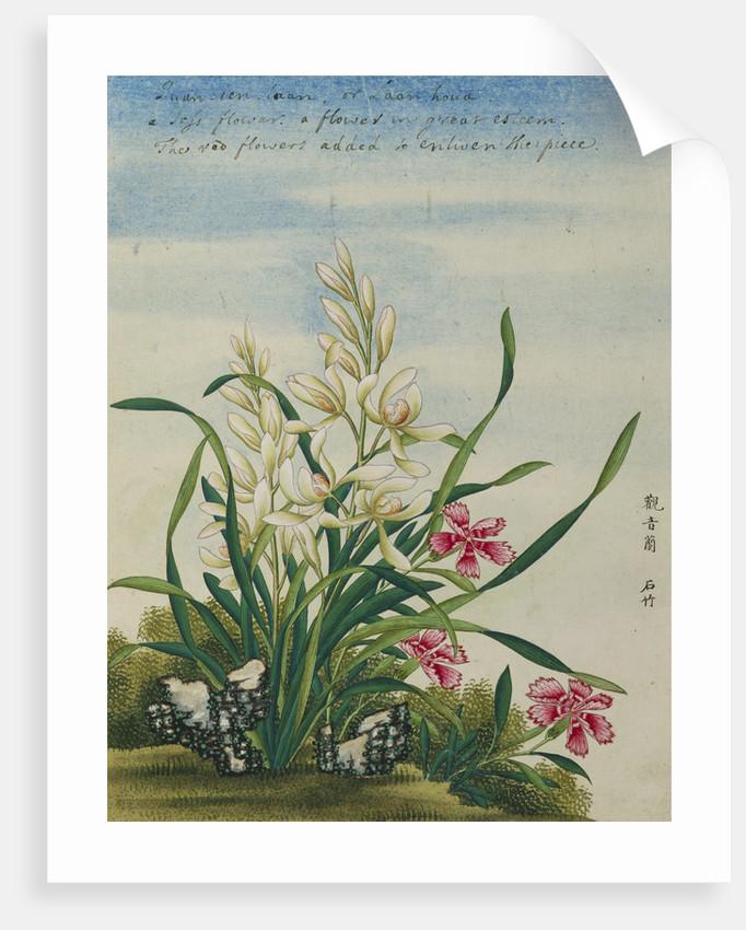 A Joss Flower, A Flower in Great Esteem Chinese Watercolor by Corbis
