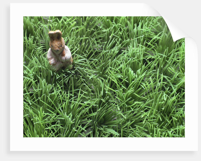 Easter bunny in grass by Corbis