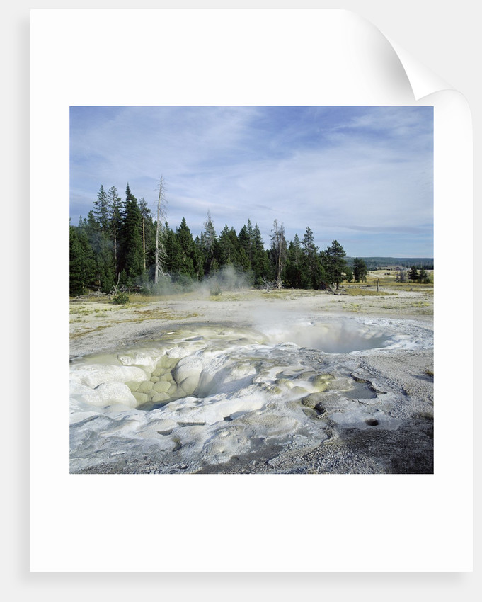 Geyser steaming, Yellowstone National Park, Wyoming, USA by Corbis