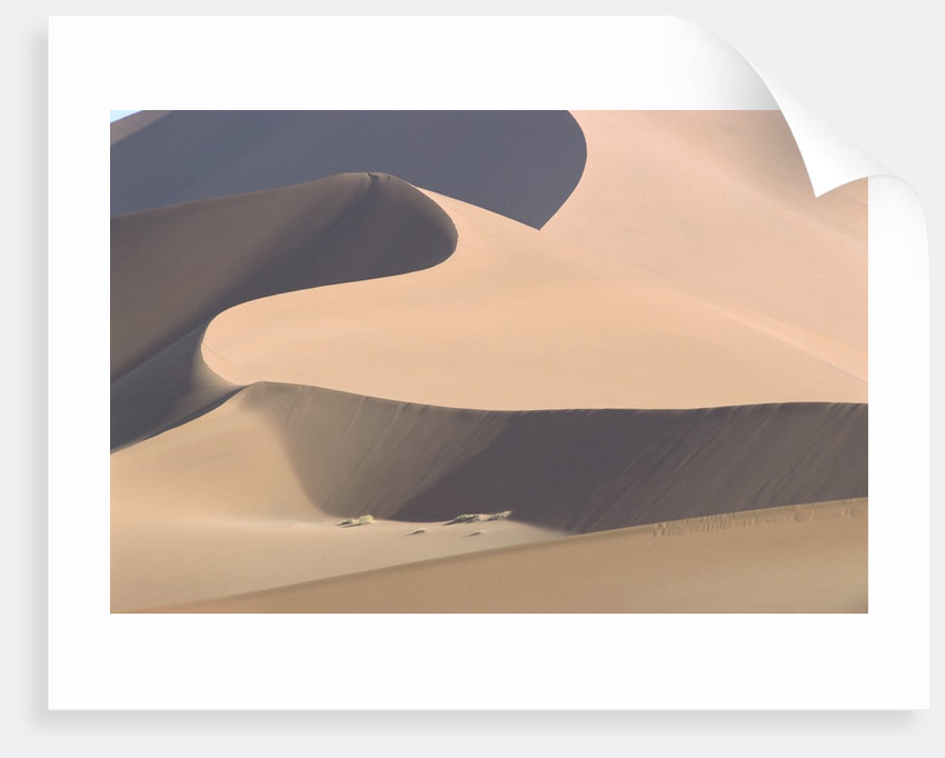 View of sand dunes in a desert by Corbis