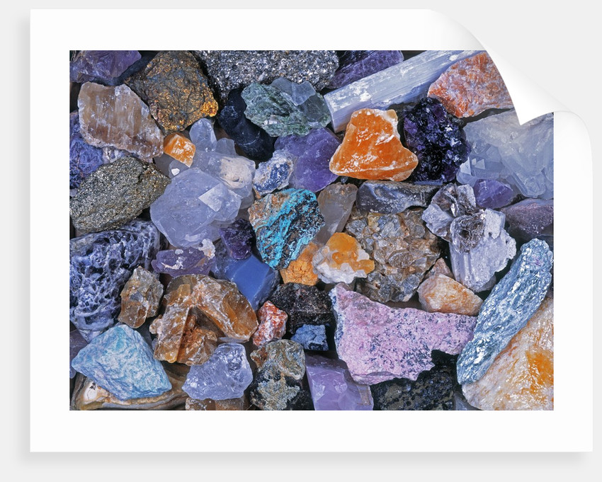 Assorted Minerals of the World by Corbis