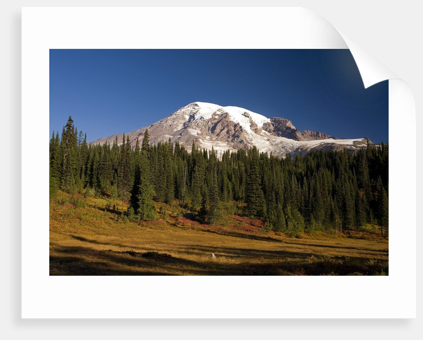Fall Colors at Sunrise on Mount Rainier by Corbis