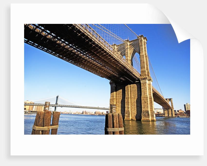 Brooklyn and Manhattan Bridges by Corbis