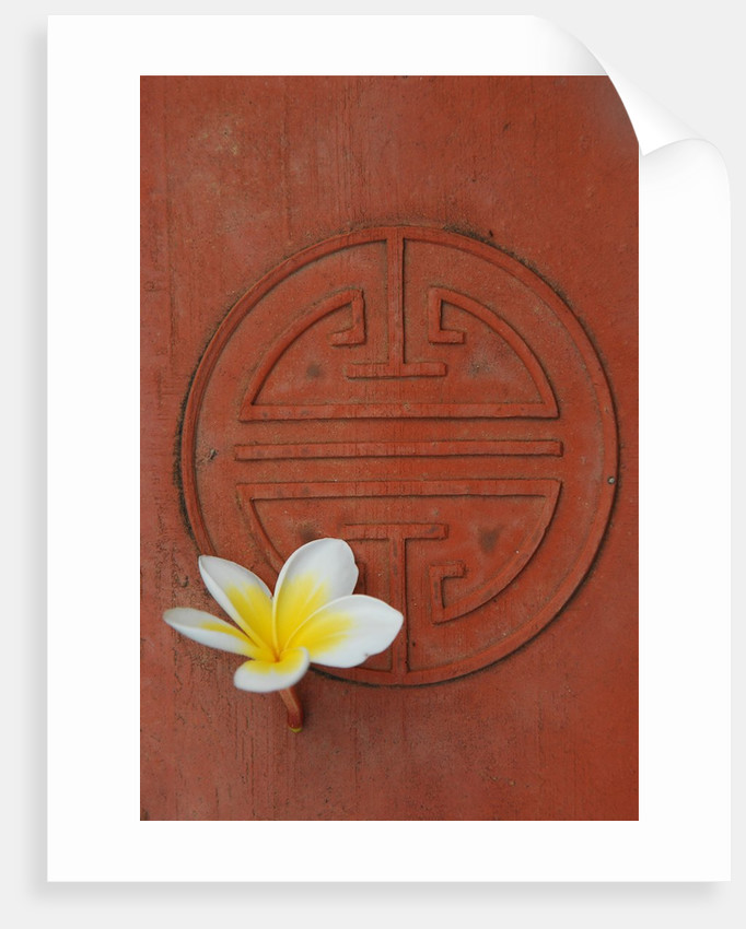 Long Life Symbol And Lotus Flower Posters Prints By Corbis
