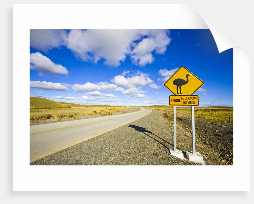 Greater Rhea Crossing Sign on Rural Road by Corbis