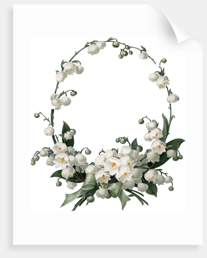 Illustration Of White Flower Border Posters Prints By Corbis