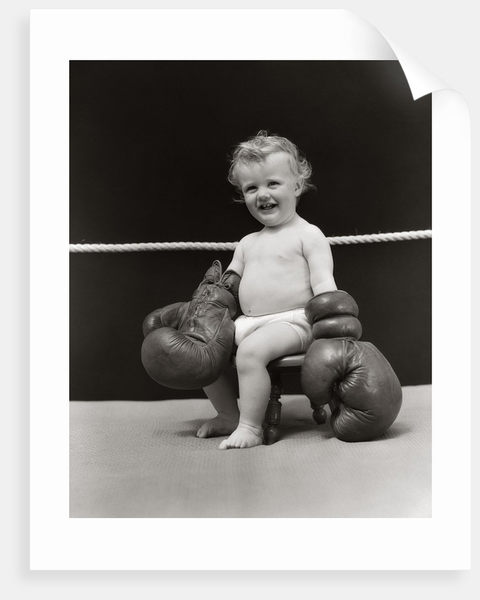 1930s Baby Seated On Stool In Boxing Ring Wearing Oversized Boxing Gloves Wearing Diaper by Corbis
