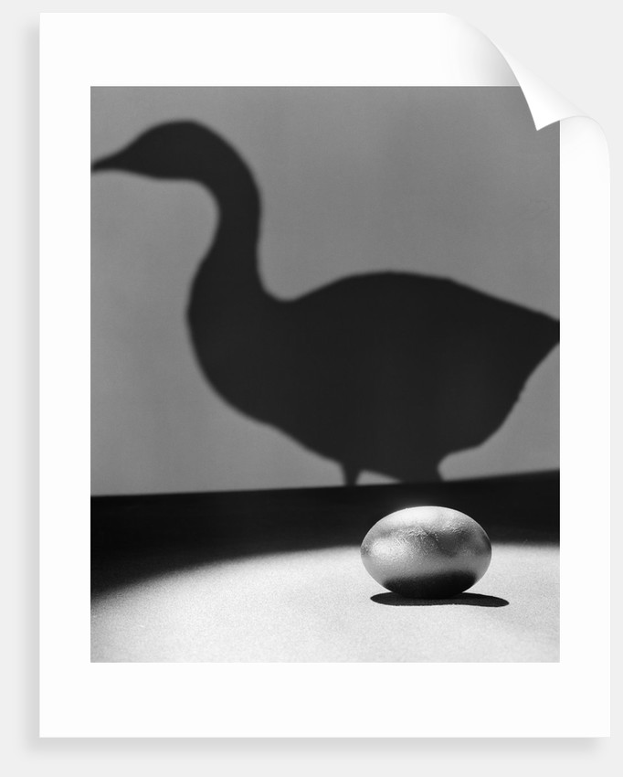 1930s 1940s Still Life Of Golden Egg In Spotlight In Foreground With Silhouette Of Goose On Wall In Background by Corbis