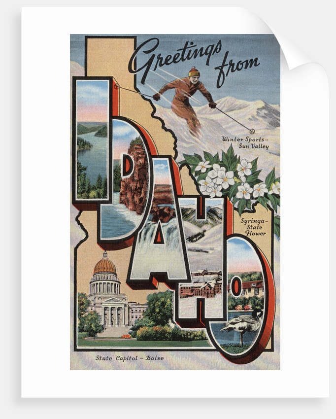 Greetings from Idaho Postcard by Corbis